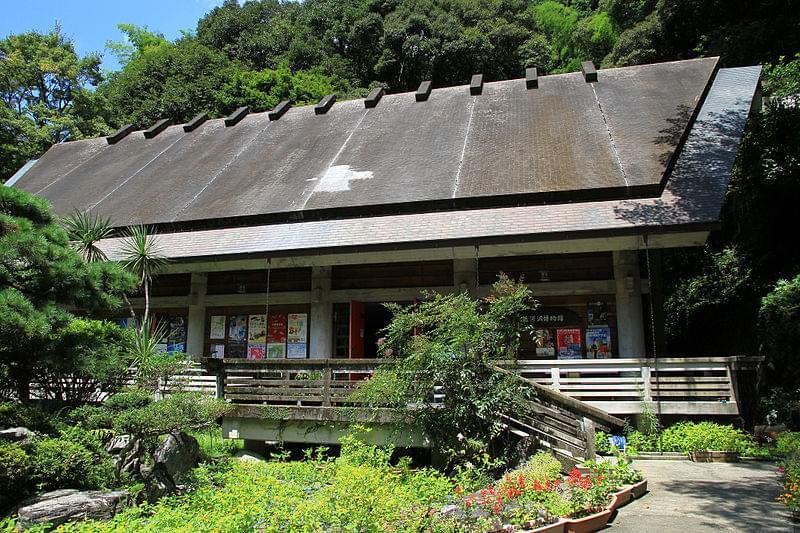 高知観光のおすすめスポット4選!動物・植物にふれよう!