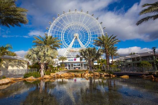 【フロリダ】アイ・ドライブ360に行こう! 人気観光スポット4選