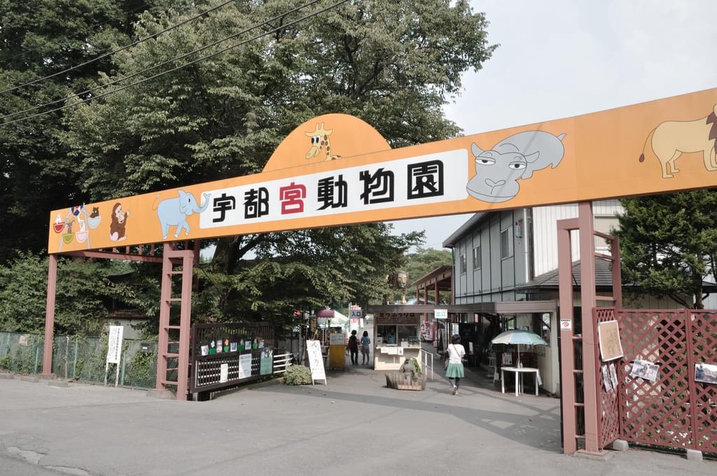 栃木観光はココに行けば間違いない!必ず行くべき観光スポット15選
