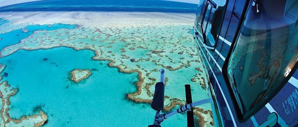 オーストラリア・ハミルントン島のアクティビティをご紹介!
