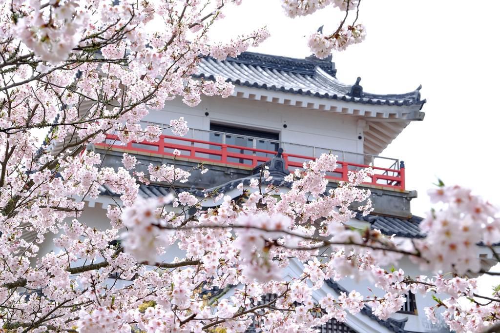 佐賀のマストなおすすめ観光スポット4選!日本の歴史をたどろう!