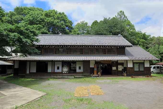 埼玉の所沢にあるトトロの森で散策を楽しみたい!おすすめコースをご紹介♪