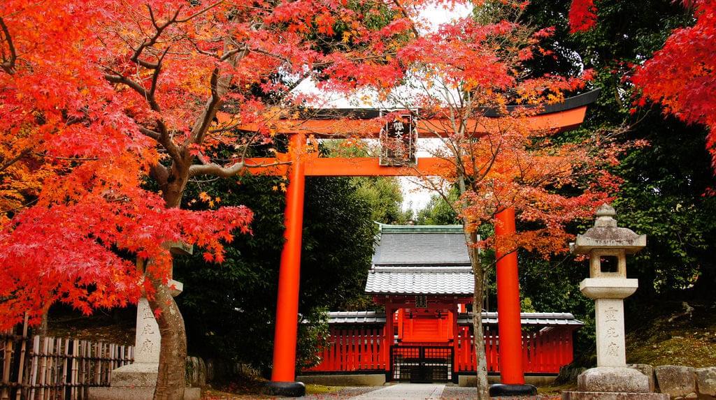 京都観光のプロが選ぶ観光スポットランキングTOP30!おすすめはここ!