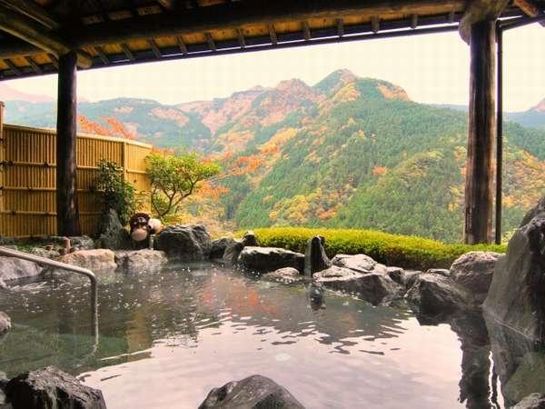 祖谷温泉郷へ行ったら欠かせない!観光の見どころ&おすすめ宿4選