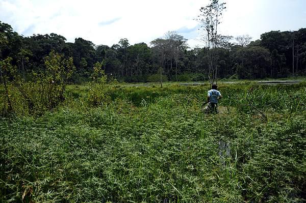 自然豊かなアフリカのコンゴ共和国!おすすめ観光スポット4選をご紹介!