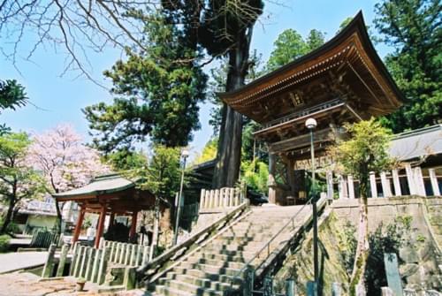 黒川温泉行くべき人気観光スポットおすすめ15選!人気の定番から穴場まで!