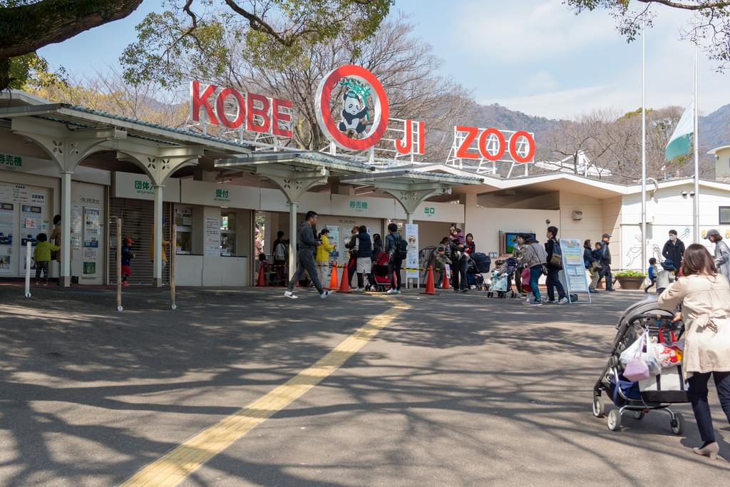 神戸の一人旅におすすめの観光スポット15選