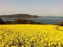 福岡の一人旅におすすめの観光&グルメスポット15選!おいしい地元グルメを堪能!