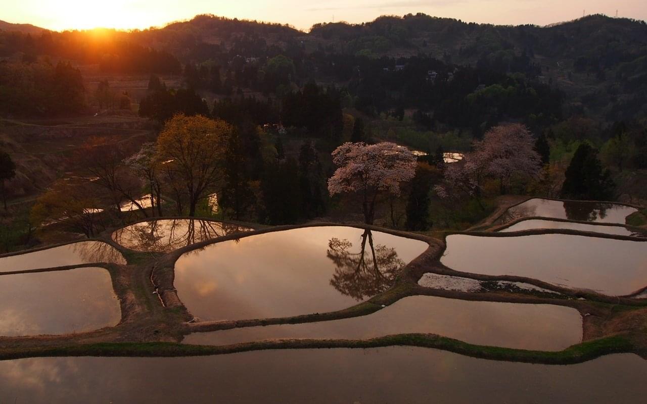 新潟の一人旅は、インスタ映えする撮影スポット越後妻有へ!おすすめの新潟グルメ&観光スポット15選