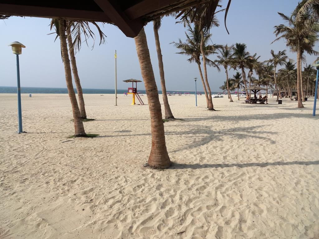 UAEドバイ観光おすすめアクティビティ&ツアー15選!世界有数のリッチ・リゾートを遊び尽くせ