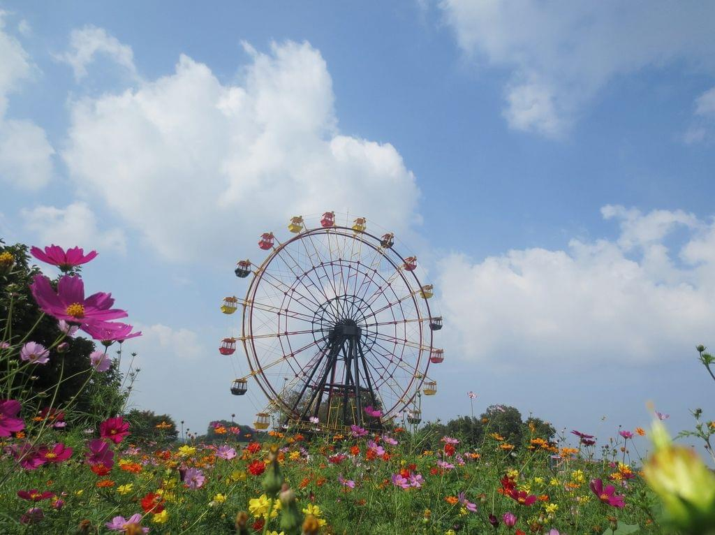 東京ドイツ村までのアクセスは?見どころや周辺観光情報まで