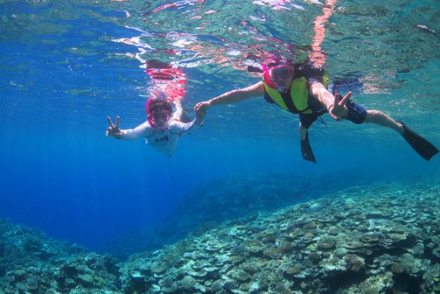 屋久島でおすすめのダイビングガイドショップTOP11