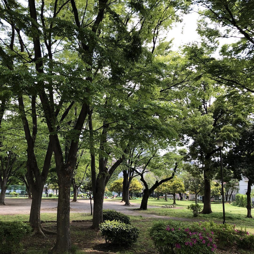 六本木近辺でおすすめの公園10選!子どもの遊び場・ピクニックやお散歩にもぴったり