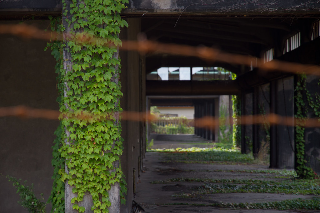高子沼グリーンランドは福島にあったテーマパーク!世界的に有名な廃墟の歴史や噂をまとめました