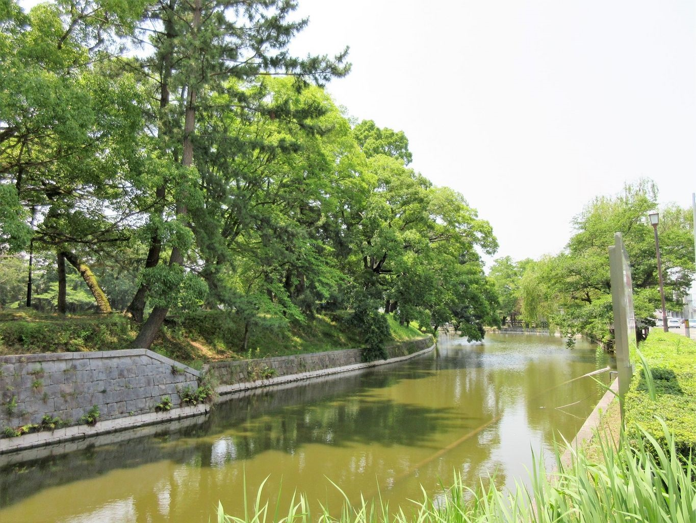 霞ヶ浦のおすすめ観光スポット10選!一度は訪れたい場所まとめ