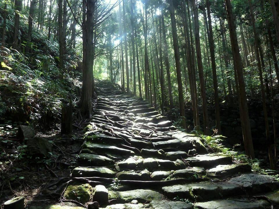 和歌山で人気の暇つぶしスポット10選!時間ができた時のおすすめスポットをご紹介