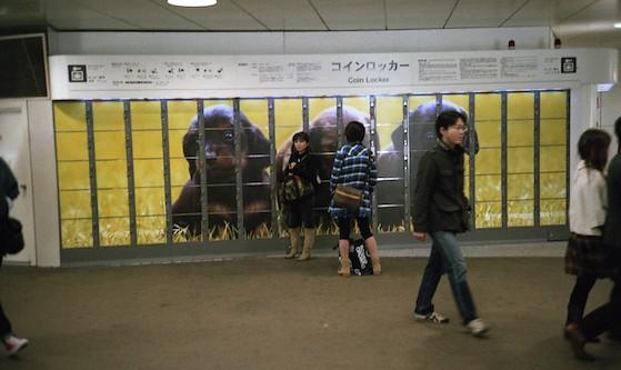 【池袋】JR池袋駅や駅周辺のコインロッカー10選!料金やサイズを調査